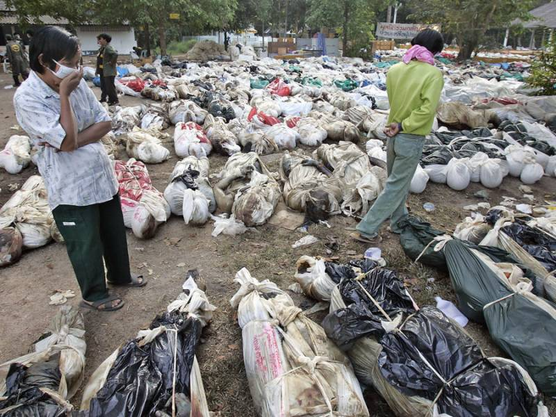 400 bodies unidentified in Thailand after tsunami - Home Page