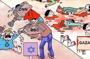 gaza-genocide