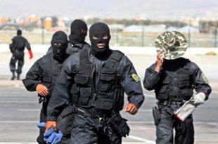 Iran Crack Forces Kill ISIS Figure, Bust Terror Band in Kermanshah