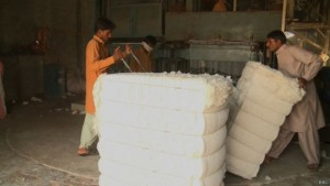 151113005413_cotton_ginning_mills_640x360_bbc
