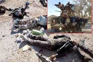 yeman alqaida terrorist